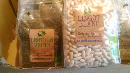 Haricot sec lingot blance BIO France (500g)